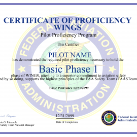 Practical Guide to the WINGS Pilot Proficiency Program